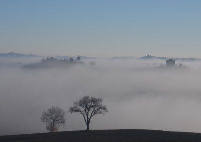 morgen-nebel-im-februar-in-italien
