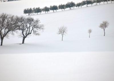 Schnee18-019---Kopie---Kopi