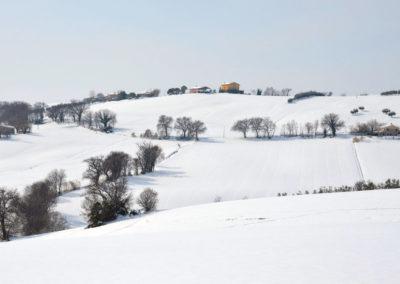 Schnee18-023---Kopie