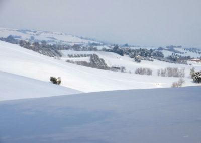 Schnee18-032---Kopie