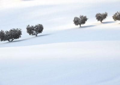Schnee18-034---Kopie