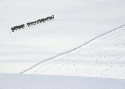 Schnee18-040---Kopie